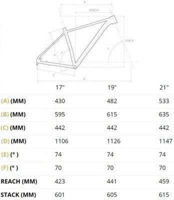 4Ever Trinity Race 29''Black/Metallic Silver 17''2021