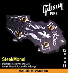 Gibson SBG-571M Banjo Strings