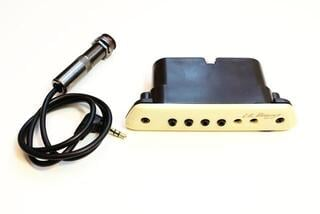 L.R. Baggs M1A Active Soundhole Magnetic Pickup
