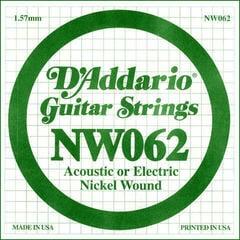 D'Addario NW 062
