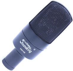 Soundking EB 018 B