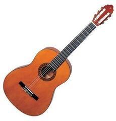 Valencia CG160 Classical guitar 1/2