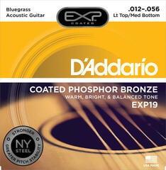 D'Addario EXP 19