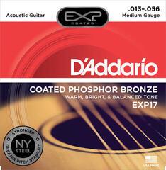 D'Addario EXP 17