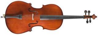 Stagg VNC-3-4 3/4 Akustisches Cello