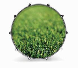 Evans 24'' NATURE GRASS