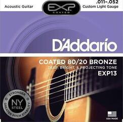 D'Addario EXP 13