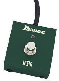 Ibanez FS1G