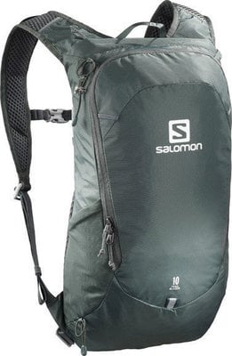 Salomon Trailblazer 10 Urban Chic/Alloy