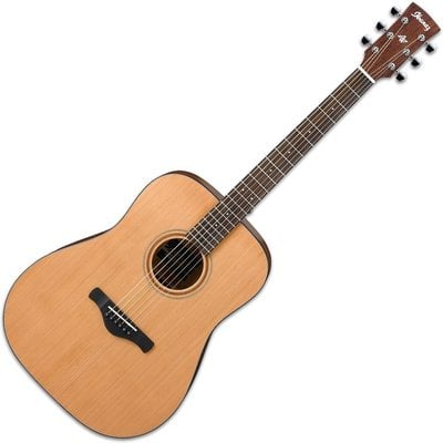 Ibanez AW65 Artwood Dreadnought Natural Low Gloss