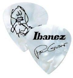 Ibanez 1000PG-PW