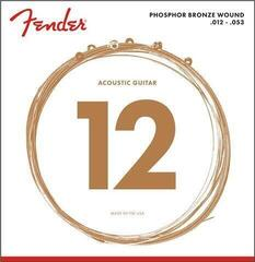 Fender Phosphor Bronze Acoustic 60L .12-.53