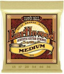 Ernie Ball 2002 Earthwood