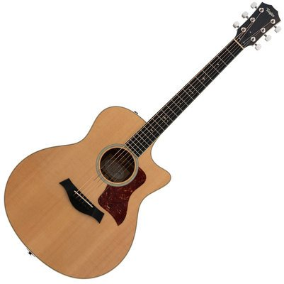 Taylor Guitars 516ce Grand Symphony