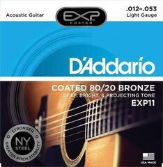 D'Addario EXP 11
