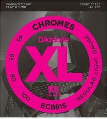 D'Addario ECB 81S Chromes Bass Regular Light 45-100