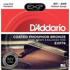 D'Addario EXP-74 Mandolin Strings