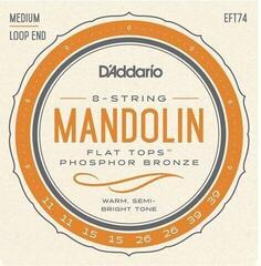 D'Addario FT-74 Mandolin Strings