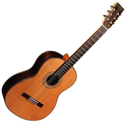 Sigma Guitars CR-6