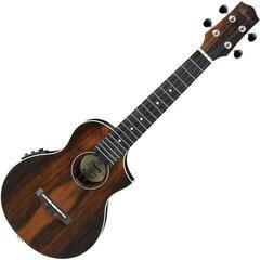 Ibanez UEW13MEE-DBO Koncertne ukulele