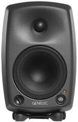 Genelec 8130A Digital Monitor System