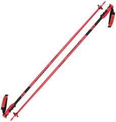Rossignol Hero SL Ski Poles Hero