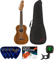 Fender Zuma Concert Ukulele WN Natural SET