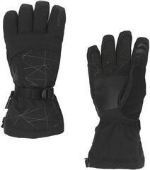 Spyder Overweb Gore-Tex Mens Ski Gloves Black