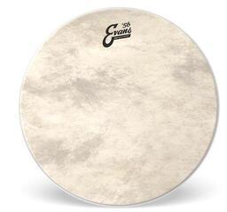 Evans EQ4 Calftone Drum Head