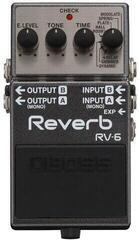 Boss RV-6