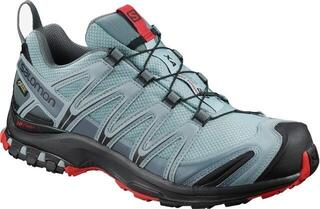 Salomon XA Pro 3D GTX Lead/Black/Barbados Cherry