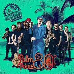 The Dualers Palm Trees And 80 Degrees (Vinyl LP)