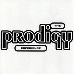 Prodigy Experience