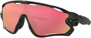 Oakley Jawbreaker Matte Black/Prizm Snow Torch