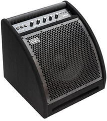 Soundking DS50 Active Stage Monitor