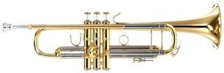 Vincent Bach LR180-37 Stradivarius