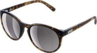 POC Know Tortoise Brown-Silver