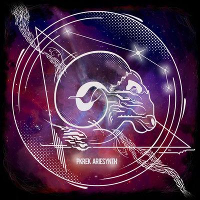 Pkrek Ariesynth / Vinyl LP