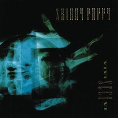 Skinny Puppy Vivi Sect Vi (Vinyl LP)