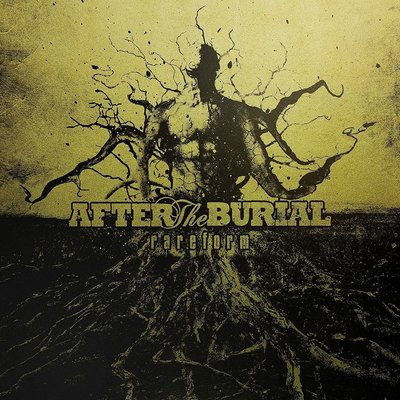 After the Burial Rareform(10 Year Anniversary)