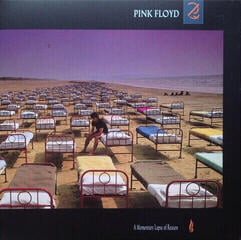 Pink Floyd A Momentary Lapse Of Reason (2011 Remastered)