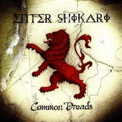 Enter Shikari Common Dreads