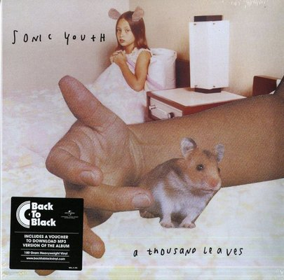 Sonic Youth A Thousand Leaves (2 LP)