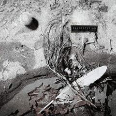 David Sylvian Secrets Of The Beehive (Vinyl LP)