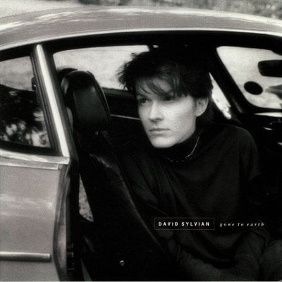 David Sylvian Gone To Earth (2 LP)