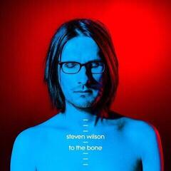 Steven Wilson To The Bone (2 LP)