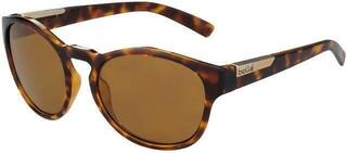 Bollé Rooke Shiny Tortoise HD Polarized Brown
