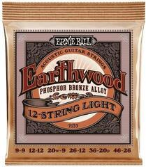 Ernie Ball 2153 Earthwood 12