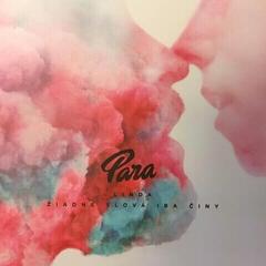 Para Linda / Žiadne slová iba činy (7'' LP)