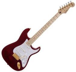 Fender Richie Kotzen Stratocaster MN TRB